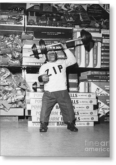 Muscle Man Greeting Card by Dick Hanley