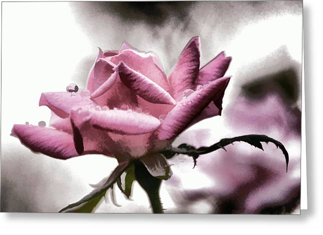 Museum Park Pink Rose Greeting Card by Trish Tritz