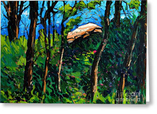 Mushrooming At Treaty Rock Greeting Card by Charlie Spear