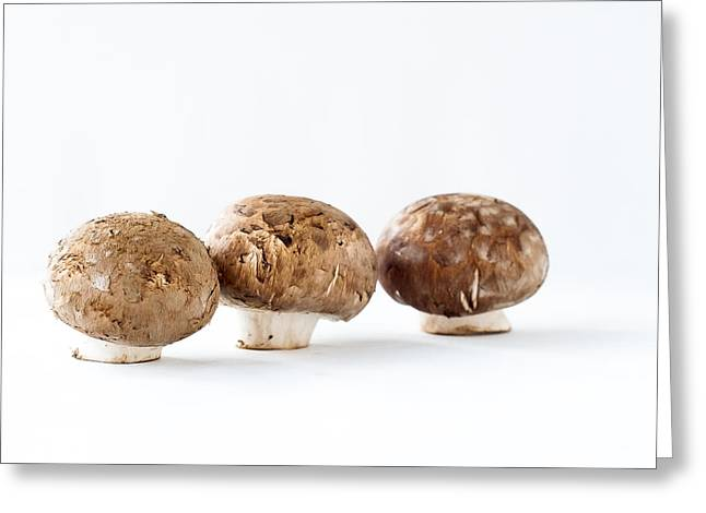Mushrooms Greeting Card by Andrew Campbell