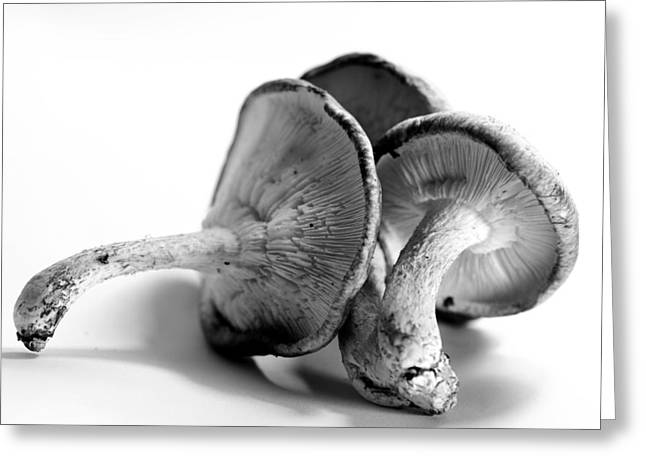 Mushrooms Greeting Card by Susie DeZarn