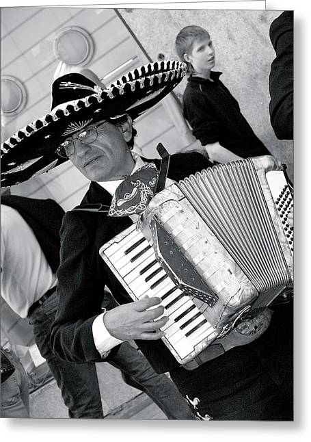 Music-mariachi Accordionist Greeting Card