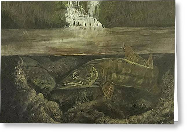 Muskellunge Greeting Card by Fallon Franzen