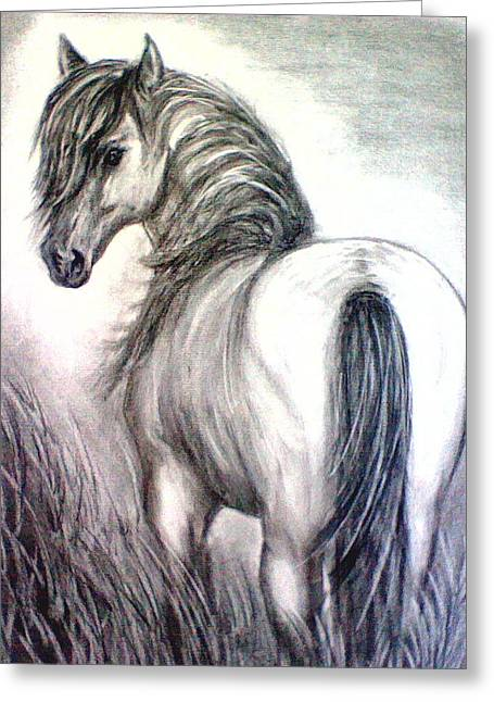 Mustang Greeting Card by J L Zarek