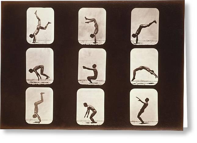 Muybridge Motion Study, 1870s Greeting Card