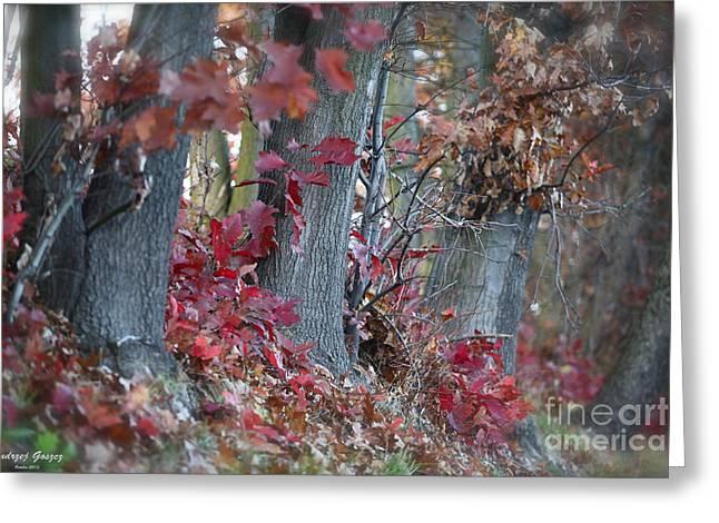 My Autumn Nostalgia. Greeting Card by  Andrzej Goszcz