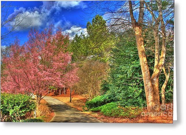 My Back Yard Greeting Card by Jeffrey Ward