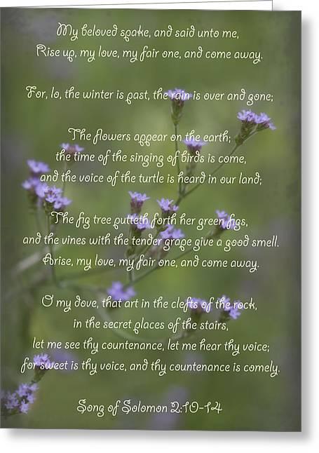 My Beloved Spoke - Purpletop Vervain Verbena Bonariensis Greeting Card