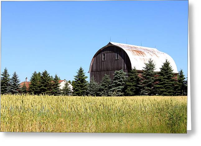 My Favorite Barn Greeting Card by Sheryl Burns