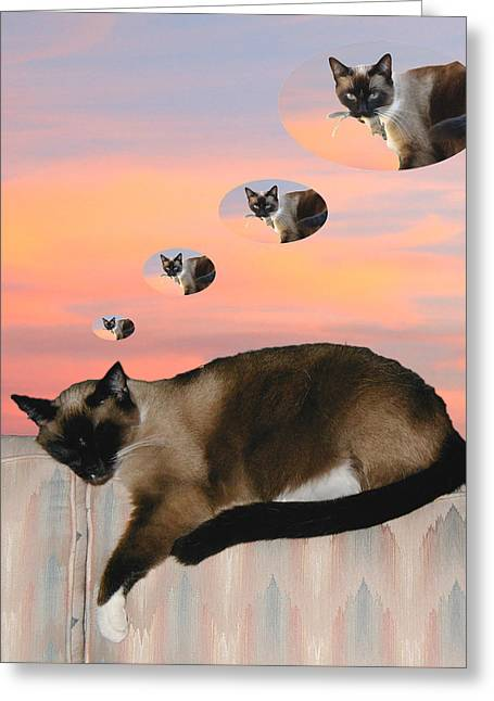 My Favorite Dream - Mouse Hunt Greeting Card