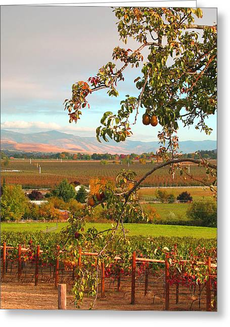 My Favorite Valley View - Autumn In Southern Oregon Greeting Card