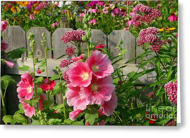 Greeting Card featuring the photograph My Garden 2011 by Steve Augustin