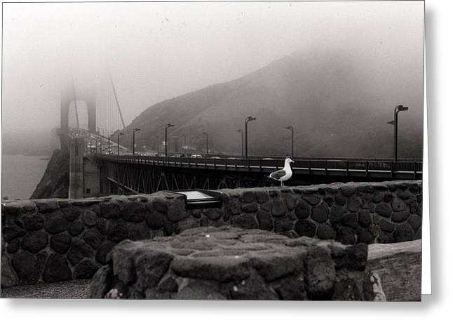 Greeting Card featuring the photograph My Golden Gate...... by Tanya Tanski