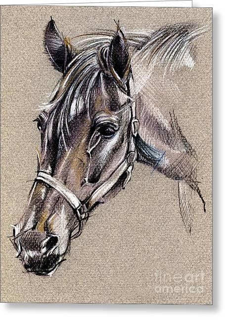 My Horse Portrait Drawing Greeting Card by Daliana Pacuraru