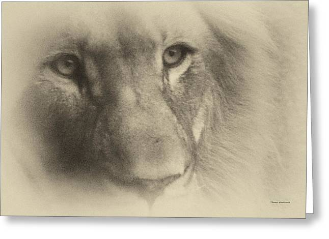 My Lion Eyes In Antique Greeting Card by Thomas Woolworth