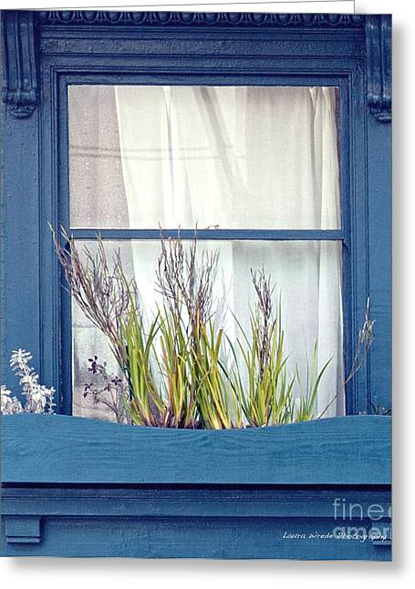 My San Francisco Window Garden Greeting Card