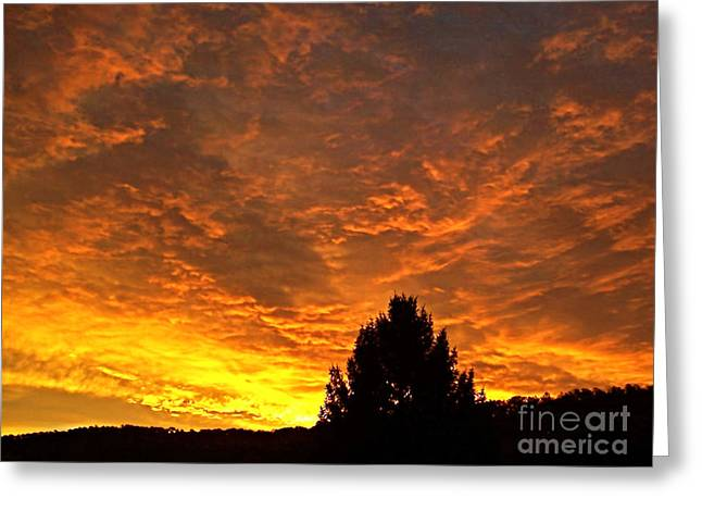 My Sky Greeting Card by Maureen Tillman