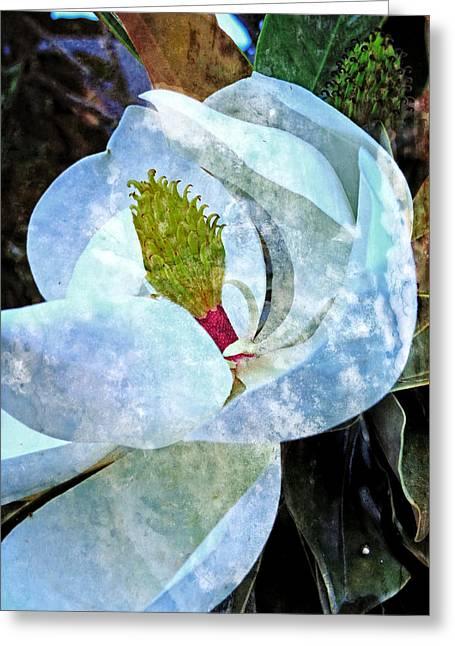 My Sweet Magnolia Greeting Card