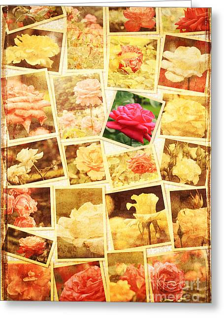 My Unfading Rose Collage IIi Greeting Card by Beverly Claire Kaiya
