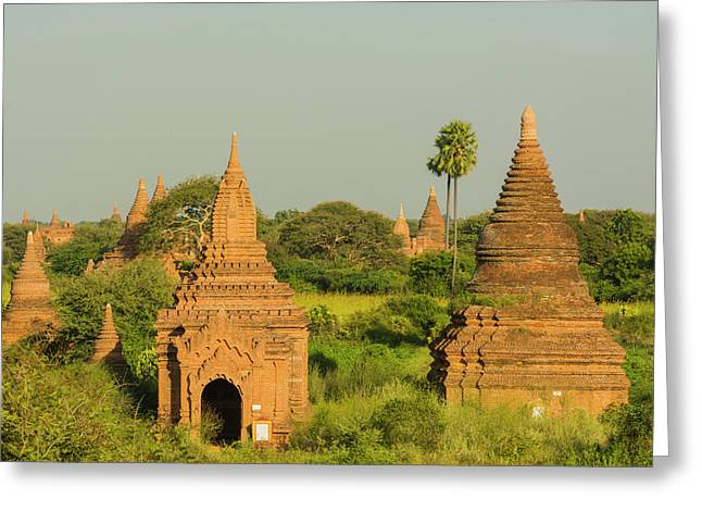 Myanmar Bagan View Of The Temples Greeting Card by Inger Hogstrom