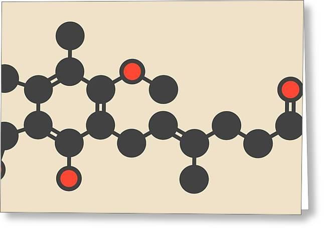 Mycophenolate Or Mycophenolic Acid Drug Greeting Card