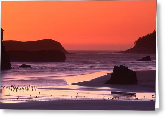 Myers Creek Sunset Greeting Card