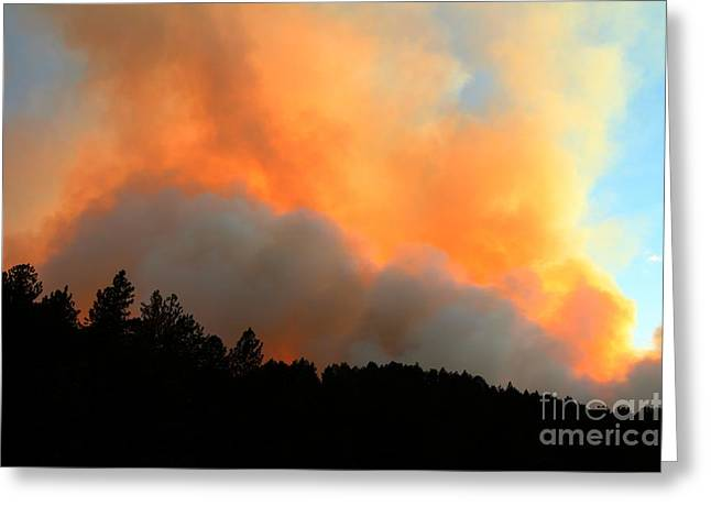 Greeting Card featuring the photograph Myrtle Fire Near Rifle Pit Road by Bill Gabbert