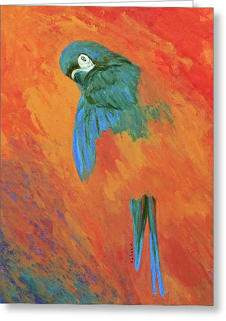 Greeting Card featuring the painting Mysterious Macaw by Margaret Saheed