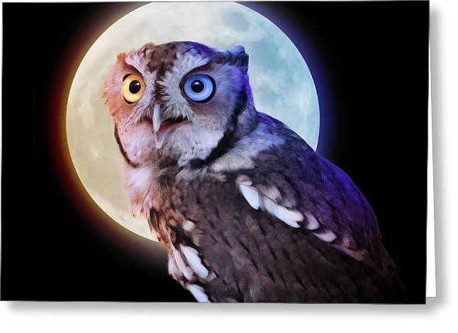 Mysterious Owl Animal At Night With Full Moon Greeting Card by Angela Waye