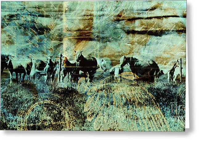 Mystery Herd Greeting Card by Judy Wood
