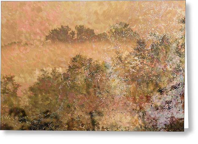 Mystery Swamp Sunrise Greeting Card by J Larry Walker
