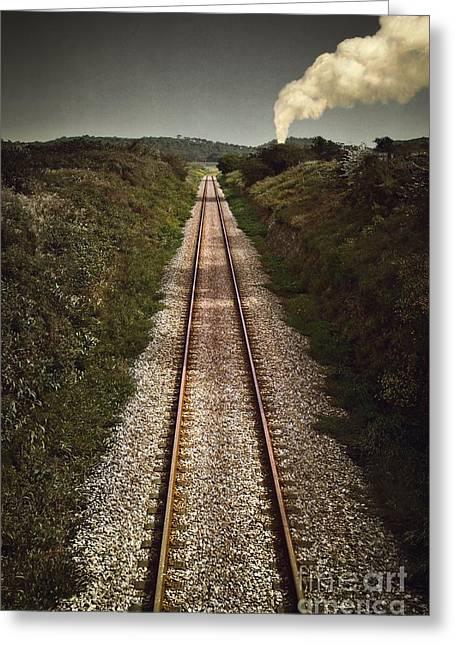 Mystery Train Greeting Card by Carlos Caetano