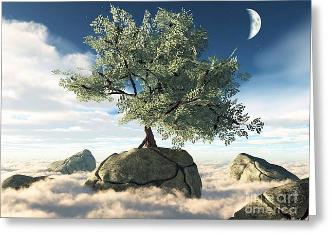 Mystery Tree Greeting Card by Eric Nagel