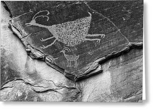 Mystery Valley Petroglyph Monument Greeting Card by John Ford