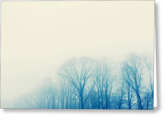Greeting Card featuring the photograph Mystic by Kim Fearheiley