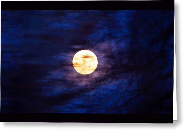 Mystic Moon Through Branches Greeting Card