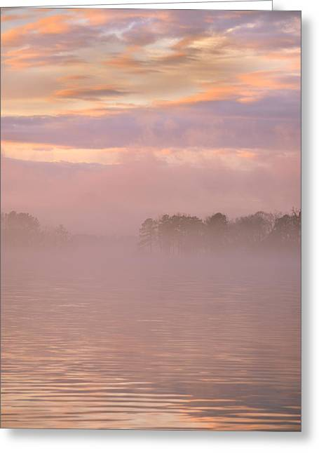 Mystic Morning Greeting Card by Lisa Wooten