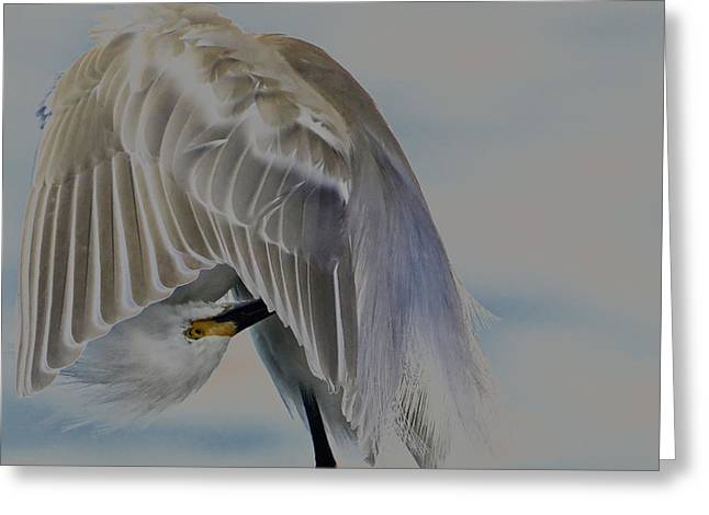 Mystical Egret Greeting Card