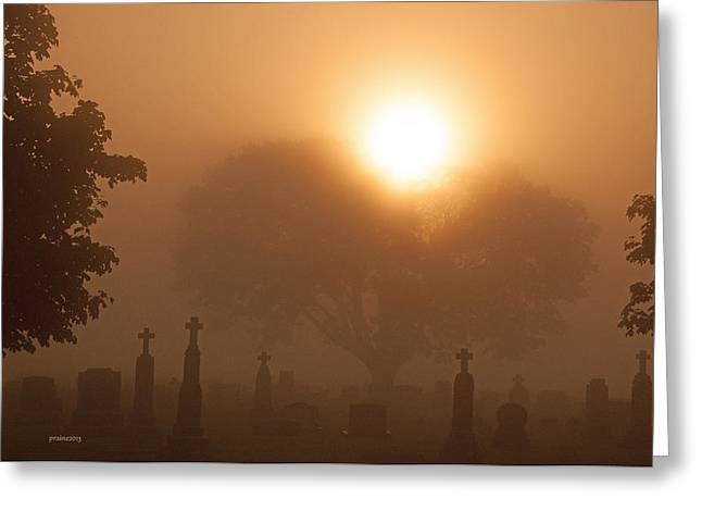 Mystical Fog Greeting Card