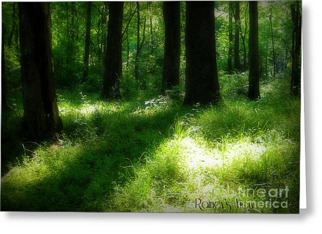 Mystical Forest Greeting Card by Lorraine Heath