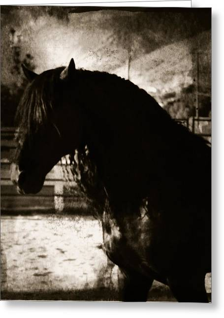 Mystical Friesian Greeting Card