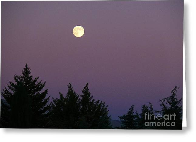 Mystical Moon Greeting Card by Jacquelyn Roberts