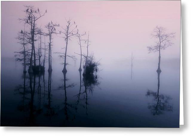 Mystical Morning On The Lake Greeting Card