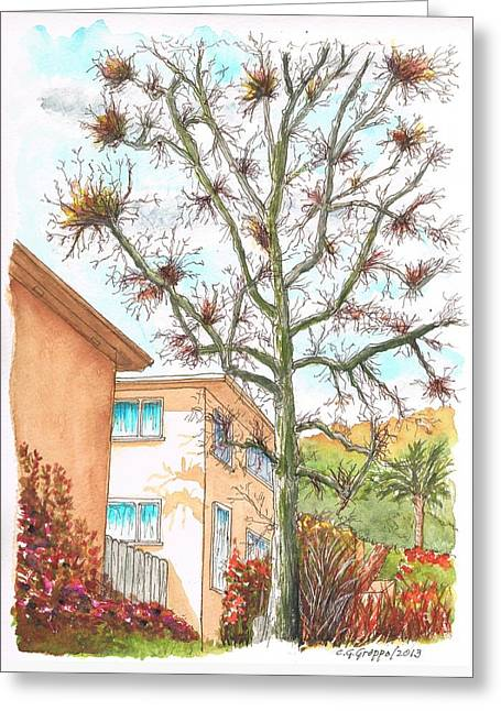 Naked Tree In Laurel And Selma Avenue, West Hollywood, California Greeting Card by Carlos G Groppa