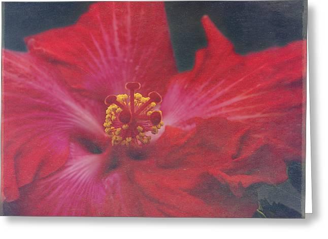 Nanakuli Floral Celebration Greeting Card by Sharon Mau