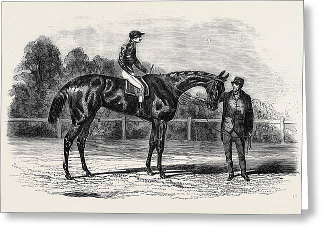 Nancy, Winner Of The Goodwood Cup Greeting Card