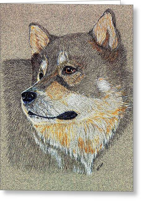 Greeting Card featuring the drawing Nanook by Stephanie Grant