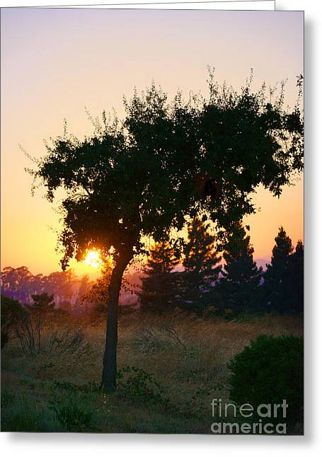 Greeting Card featuring the photograph Napa Moment by Ellen Cotton