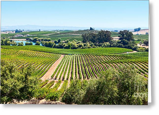 Napa Valley - Wine Vineyards In Napa Valley California. Greeting Card