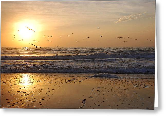 Naples Beach Greeting Card by Lorenzo Cassina
